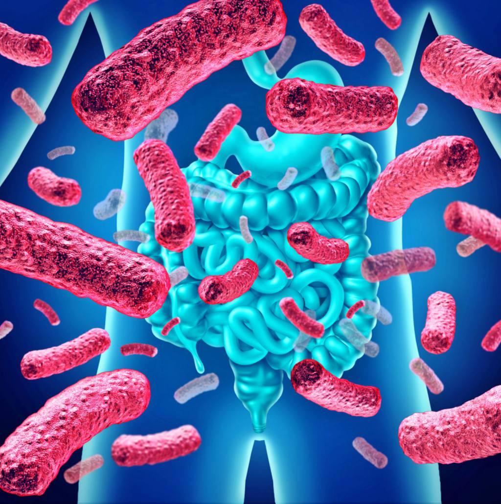 La importancia del Microbioma: II Parte